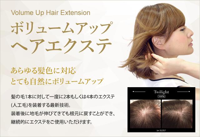 ボリュームアップヘアエクステ|あらゆる髪色に対応とても自然にボリュームアップ!今すぐ増毛したい方に最適